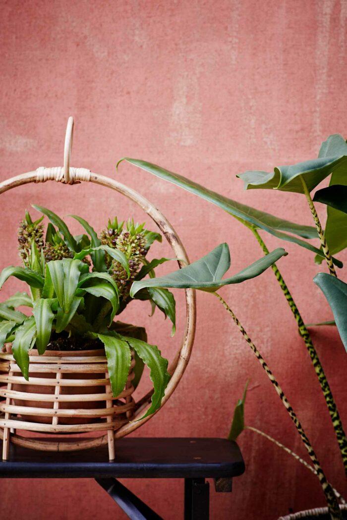 jardinière en bambou madam stoltz posée sur une table